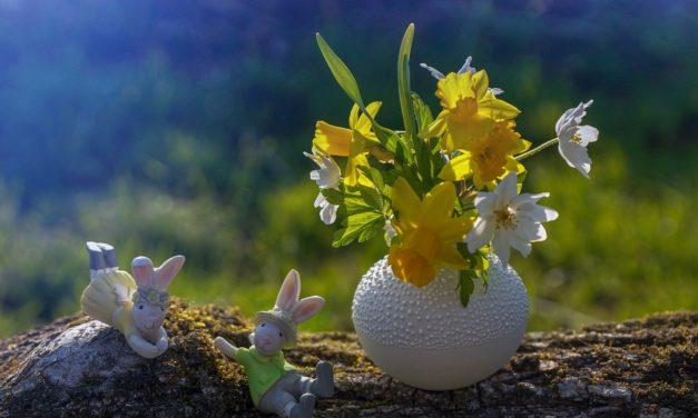 Der HKBV e.V. wünscht Frohe Ostern!